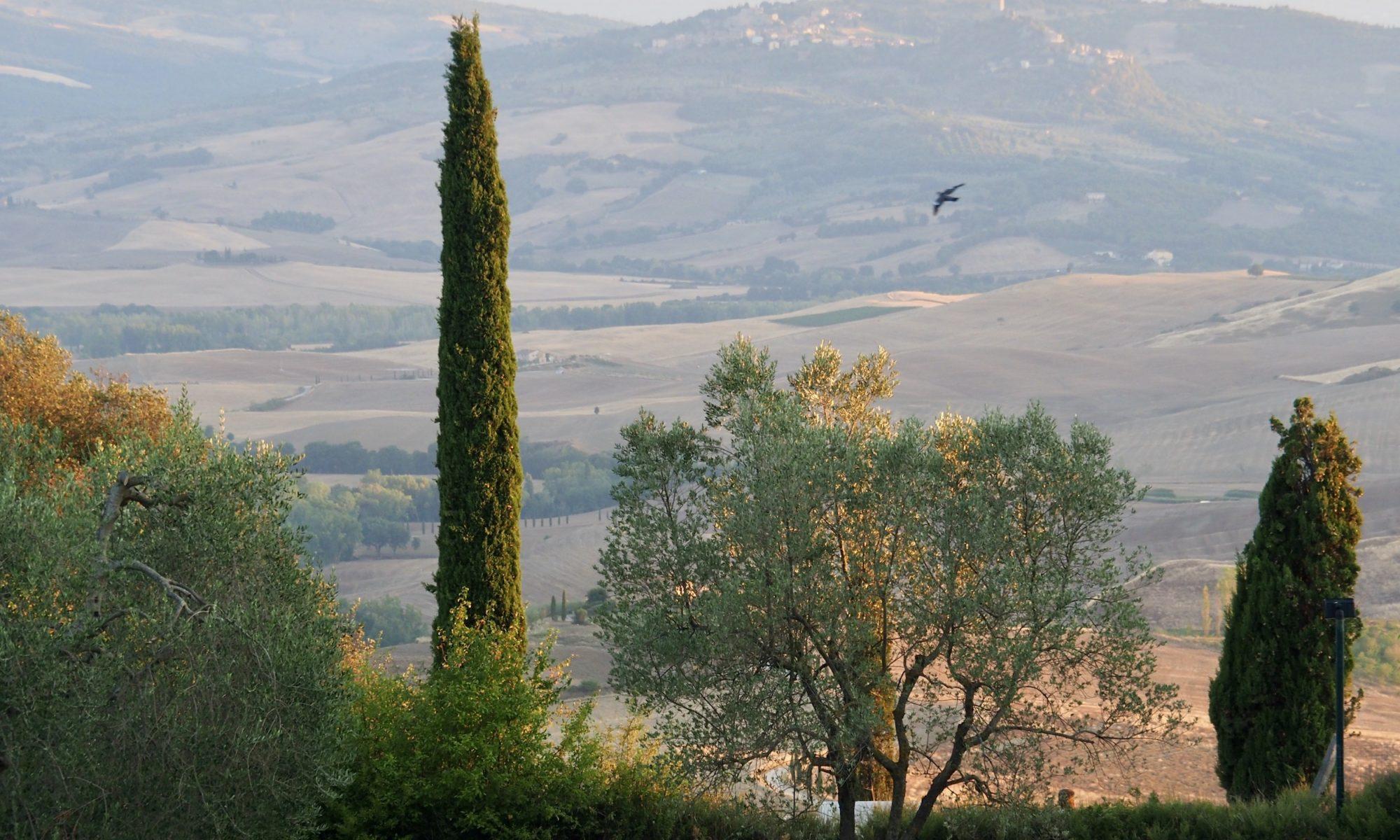 montalcino_view_m22m